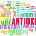 Les Anti-Oxydants, un allié indispensable à l'équilibre de notre peau!