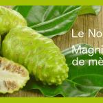 DOSSIER NOUVEAUTÉ SOIN BIO: Les propriétés du jus de Noni!
