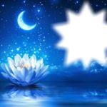 DOSSIER Rituel: Flower Power mon secret du soir!