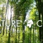 Novembre! Nature.cos: Ensemble pour changer le monde!