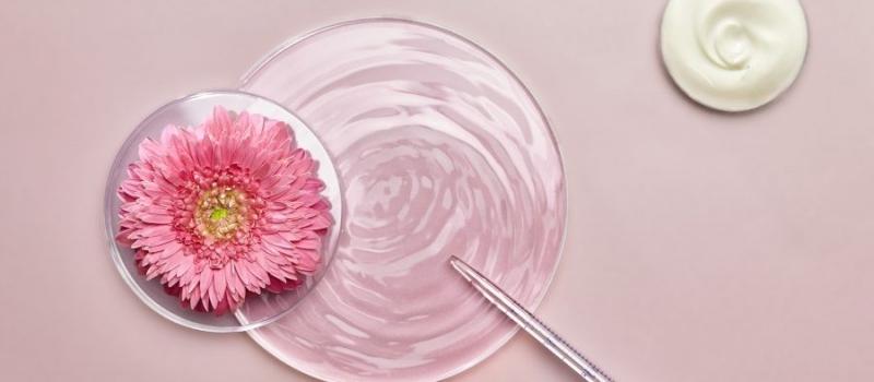 fleurs-et-science-004